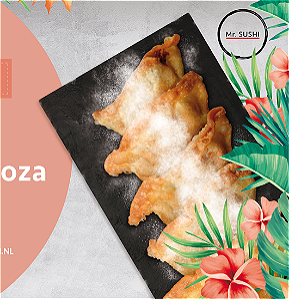 Foto !NEW! Apple Gyoza (4st)